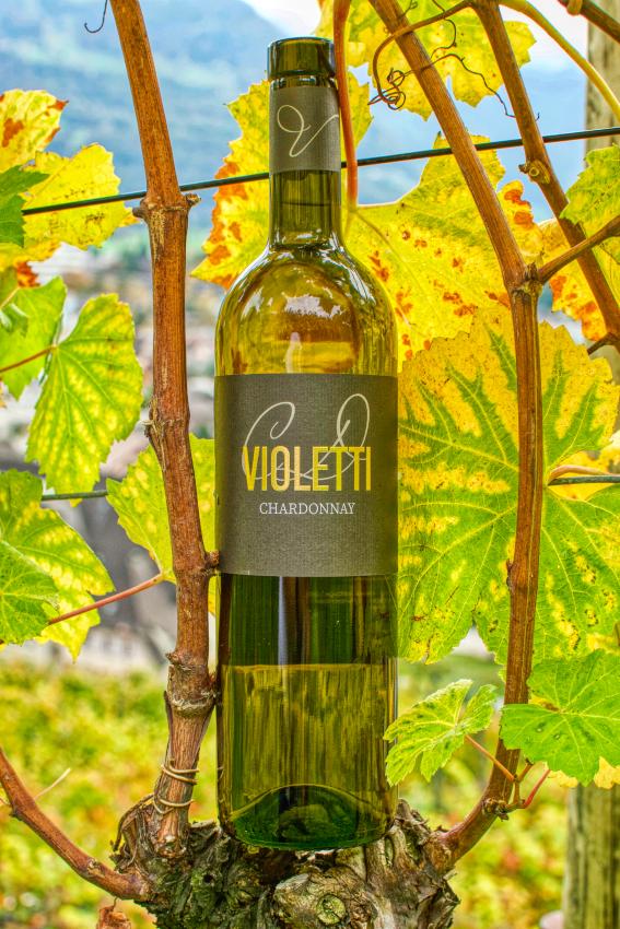 Violetti Weine Flasche Chardonnay