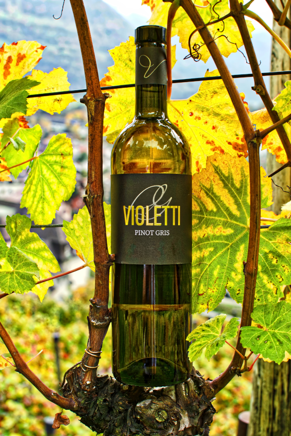 Violetti Weine Flasche Pinot Gris