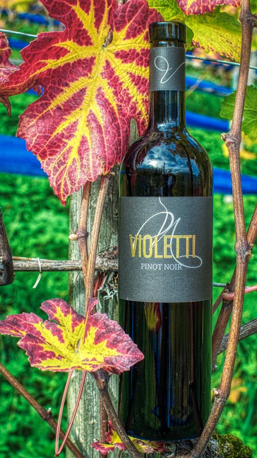 Violetti Weine Flasche Pinot Noir
